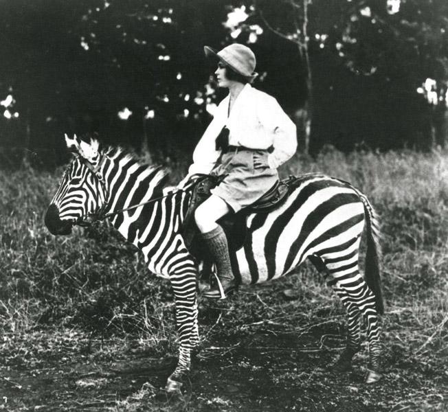 Девушка сидит на зебре