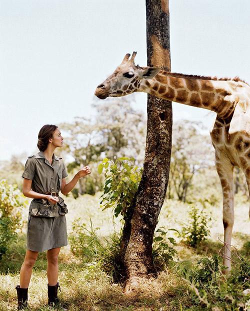 Девушка в платье в стиле сафари стоит рядом с жирафом