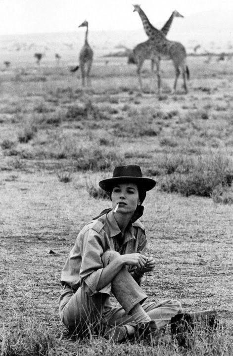 Девушка в стиле сафари сидит на земле, позади жирафы