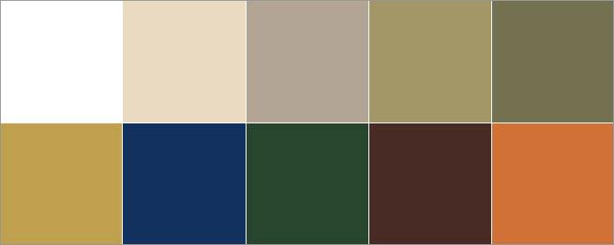 цветовая палитра стиля сафари