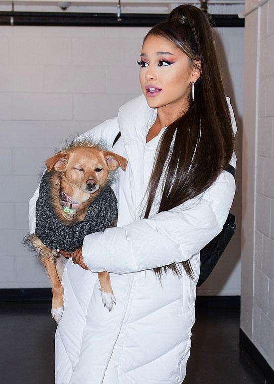 Ариана Гранде в белом пуховике с собачкой в руках