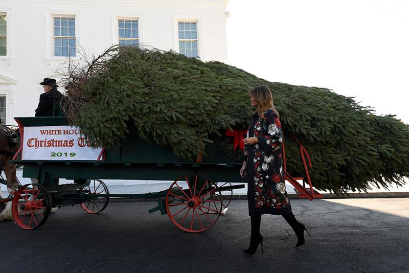 Мелания Трамп в цветочном пальто сопровождает новооднию елку