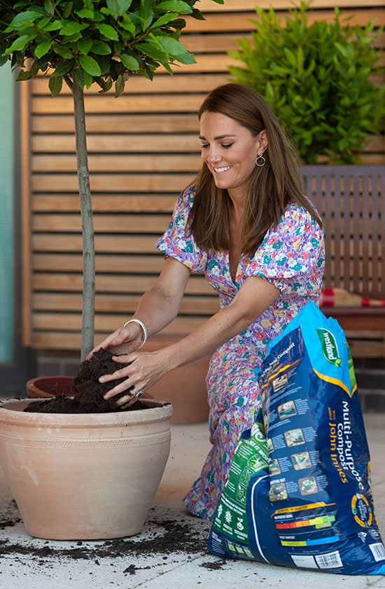 Кейт Миддлтон в цветочном платье