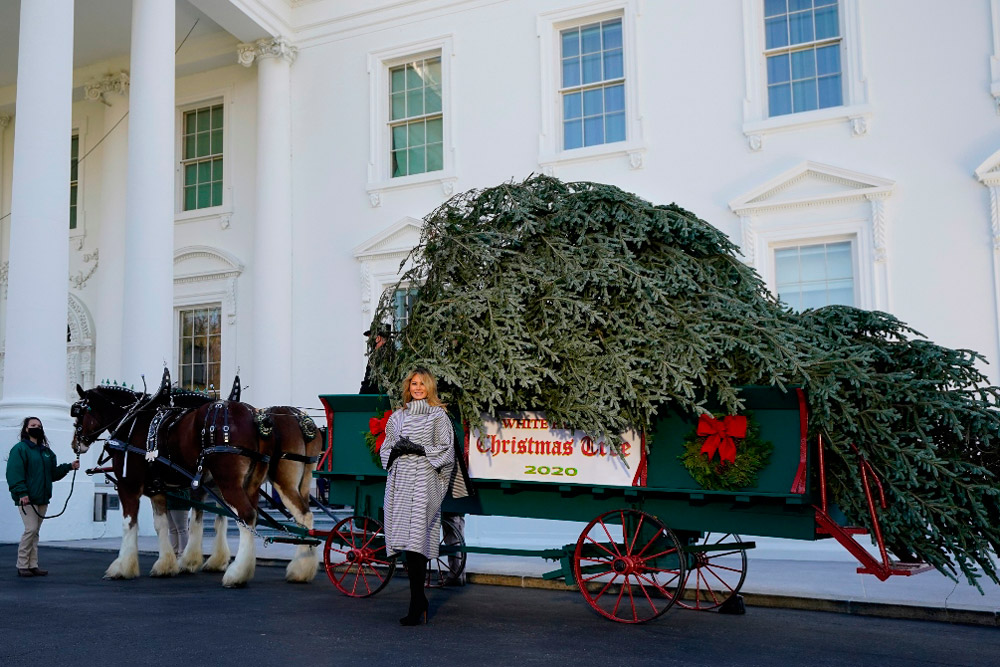 Мелания Трамп возле елки
