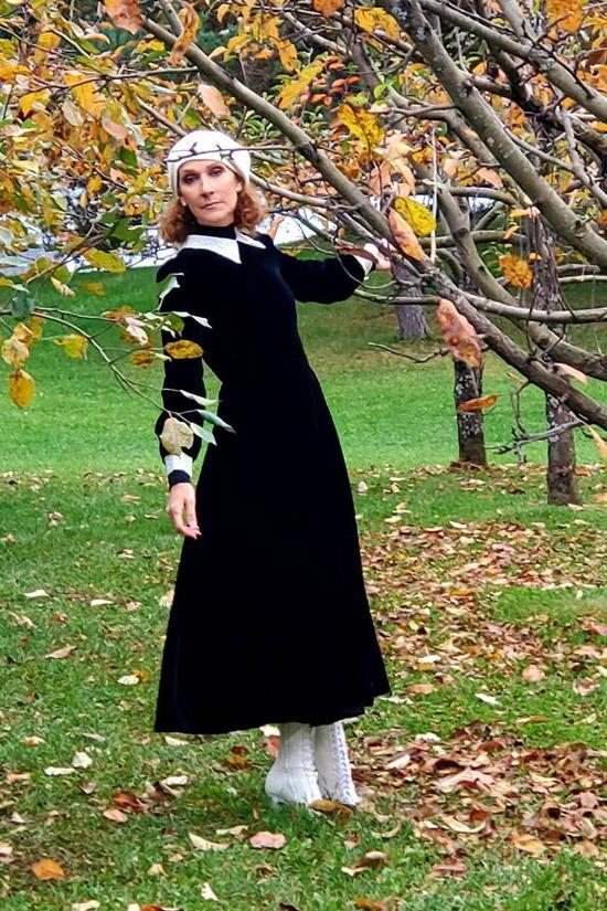 Селин Дион в черном бархатном платье