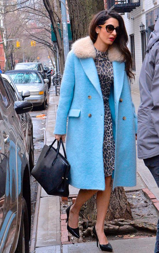 Амаль Клуни в леопардовом облегающем платье, голубое пальто с меховым воротником и черные туфли лодочки