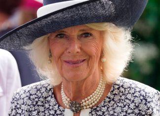 Английская герцогиня в простом платье умело дополняет свой образ несочетающимися аксессуарами